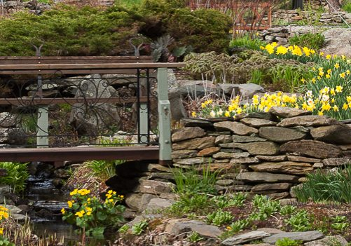 In Our Gardens We Have Always Let Nature Be Our Guide By Starting With What  Is And Then Working With That, A Design With Nature Approach.